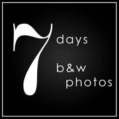 7 days Insta Cover