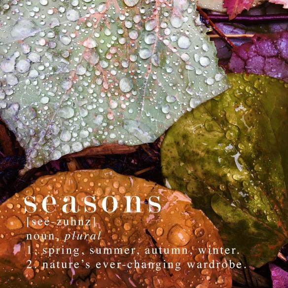 7.Seasons